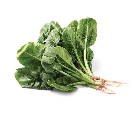 Baby-Leaf-Spinach-Fresh-to-Go1