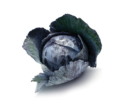 Baby-Red-Cabbage-Fruit-Fresh-to-Go