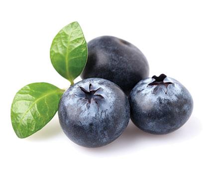 Blueberries-Fruit-Fresh-to-Go