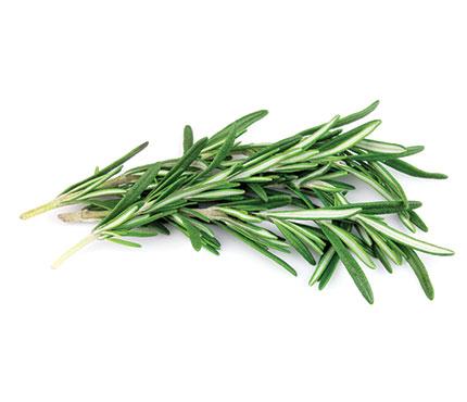 Rosemary-Fruit-Fresh-to-Go